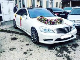 Prokat S klas аренда машин прокат машин oravardzov S 500 rent a car